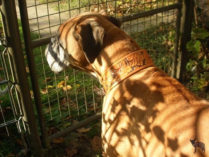 Leren hondenhalsband: The Flowers