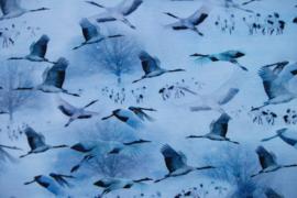 Tricot kraanvogels digitale print