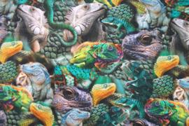 Tricot kameleon digitale print