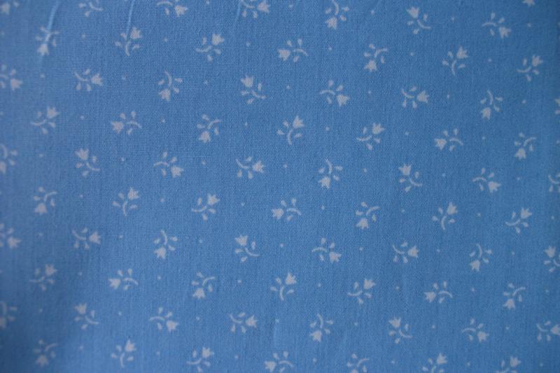 Tulp blauw