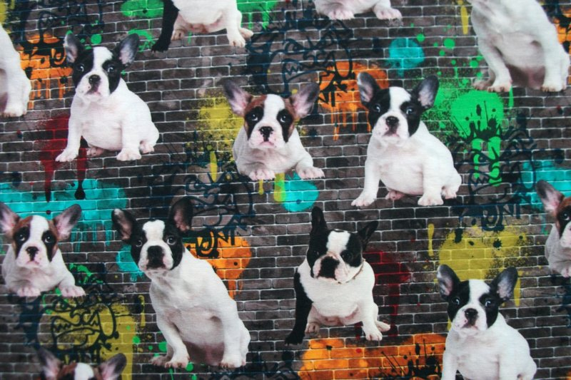 Tricot graffiti dogs digitale print