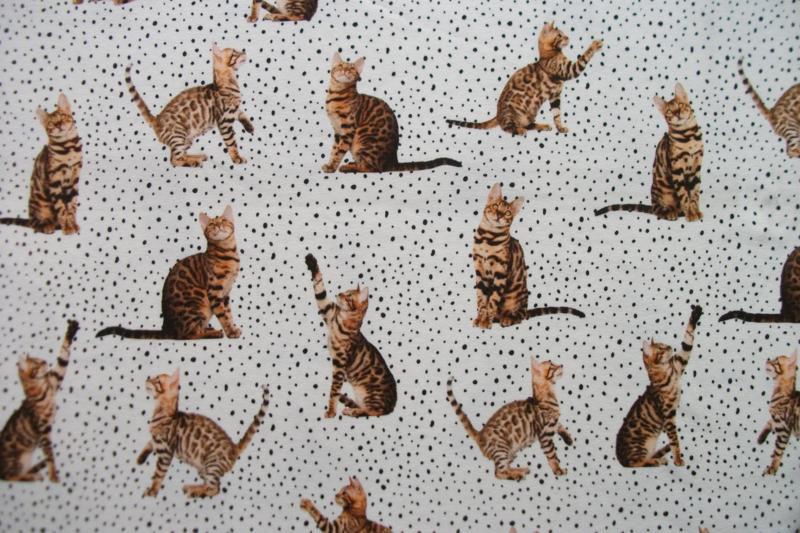 Tricot cats en dots digitale print
