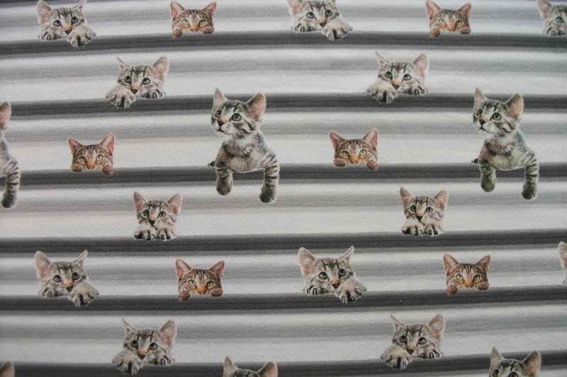 Tricot katten digitale print