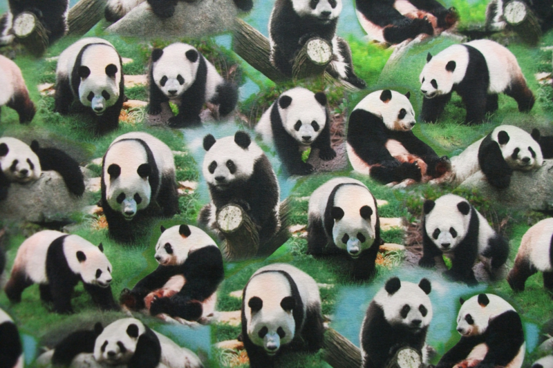 Tricot panda digitale print