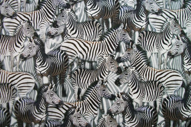 Tricot zebra digitale print