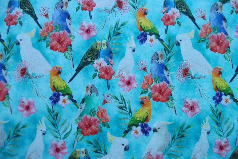 Tricot colorfull parrots digitale print