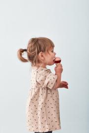 Kids Concept Bistro Houten Stand IJsjes