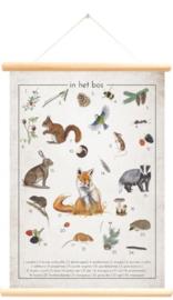 Little and Pure Schoolplaat In het Bos / Landkaart Nederland - Jasper de Ruiter (dubbelzijdig)