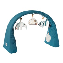 Done by Deer Activity Baby Gym - Blauw