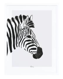 Lilipinso Serengeti Poster - Zebra (P0264)