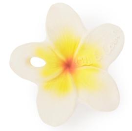 Oli and Carol Bijtspeeltje Chewy To Go Flower - Bloem