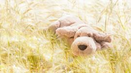 Jellycat Knuffel Hond - Henry Hound Little