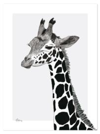 Lilipinso Serengeti Poster - Giraf (P0265)