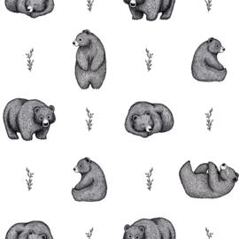 Lilipinso Romanian Hills Behang - Romanian Bears