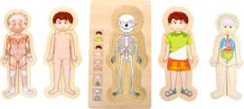 Small Foot Educate Puzzel Anatomie - Jongen + 4jr
