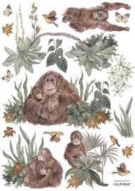 Lilipinso Utan Muurstickers A3 - Orang Oetans (29,7 x 42 cm)