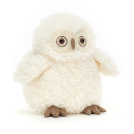 Jellycat Knuffel Uil - Apollo Owl (26 cm)