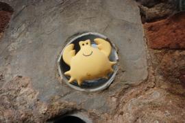 Tikiri Bijt- en Badspeelgoed met Rammelaar - Krab