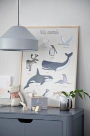 Sebra Poster - Dino's