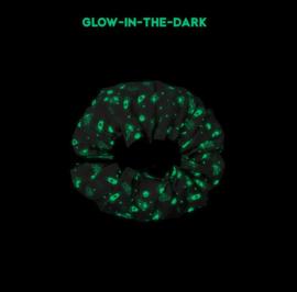 Play and Go Speelgoedkleed en opbergzak - Space Glow in the Dark (dubbelzijdig!)