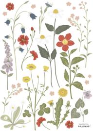 Lilipinso Countryside Muurstickers A3 - Wildflowers Paardenbloem