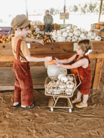 Poppie Toys Rotan Winkelwagen - Poppie Shopper