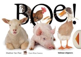 Uitgeverij Veltman Kijk en Voelboek Boe - Matthew van Fleet