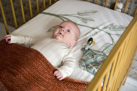 Witlof for Kids Aankleedkussenhoes - Sage Green