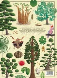 Uitgeverij Lannoo Het Grote Bomenboek - Piotr Socha