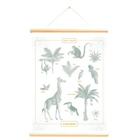 Little and Pure Schoolplaat Pimpelmees - Giraf en Aapjes (dubbelzijdig)