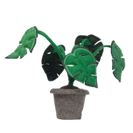 KidsDepot Kamerplant Vilt - Monstera