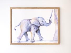 Veer Illustratie Poster - Baby Olifant