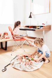 Play and Go Speelgoedkleed en opbergzak - Rainbow (dubbelzijdig!)