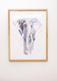 Veer Illustratie Poster - Olifant