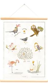 Little and Pure Schoolplaat Hviink - Magische Vogels (dubbelzijdig)