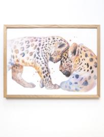 Veer Illustratie Poster - Baby Luipaard
