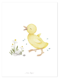 Lilipinso Lucky Ducky Poster - Little Duck (30x40cm)