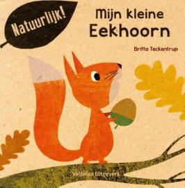 Uitgeverij Veltman Mijn Kleine Eekhoorn - Britta Teckentrup