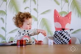 Publicatie - PRCHTG en Kinderservies Give Away - 02/2016