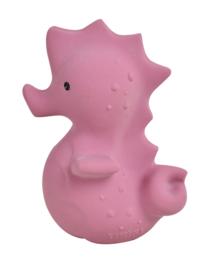 Tikiri Bijt- en Badspeelgoed met Rammelaar - Zeepaard
