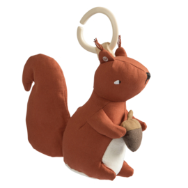 Sebra Muziekdoos Eekhoorn - Star the Squirrel