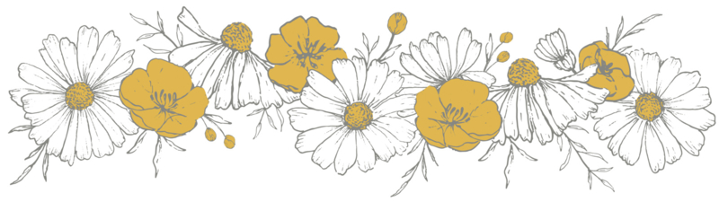 Lilipinso Chamomile Muursticker XL - Flowers Braid