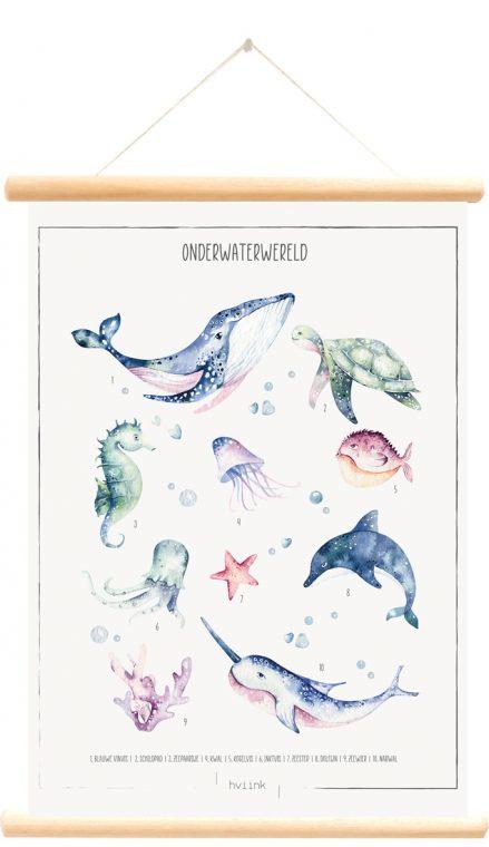 Little and Pure Schoolplaat Hviink - Onderwaterwereld (dubbelzijdig)