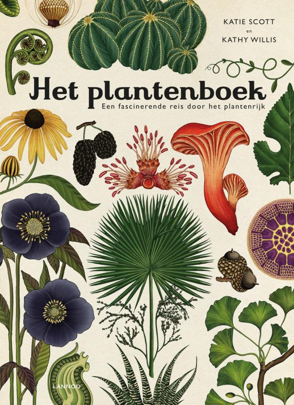 Uitgeverij Lannoo Het Plantenboek - Katie Scott & Kathy Willis