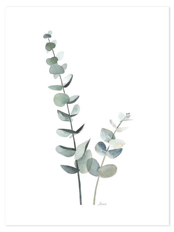 Lilipinso Greenery Poster - Eucalyptus (30x40cm)