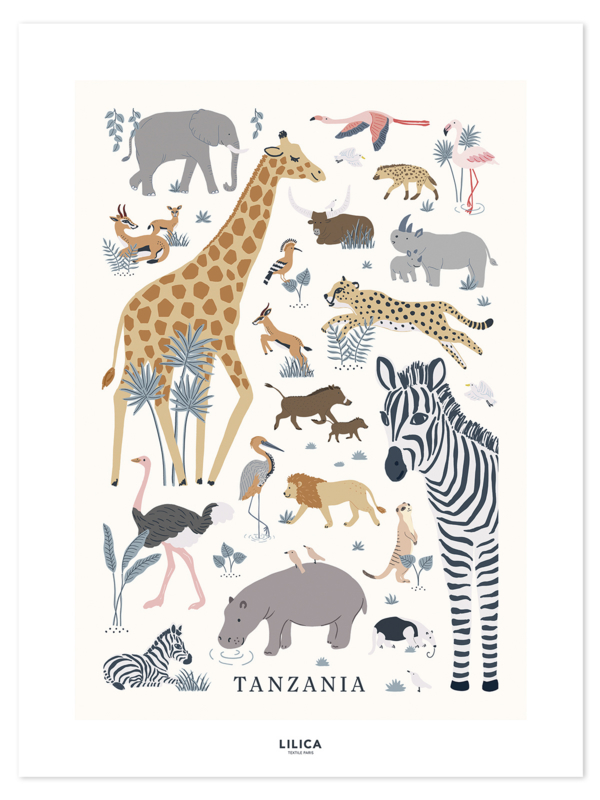 Lilipinso Tanzania Poster - Tanzania (30x40cm)