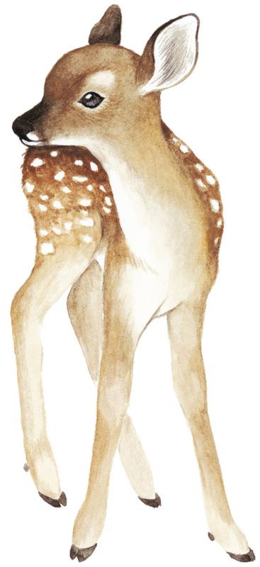 Lilipinso Oh Deer Muursticker XL - Fawn