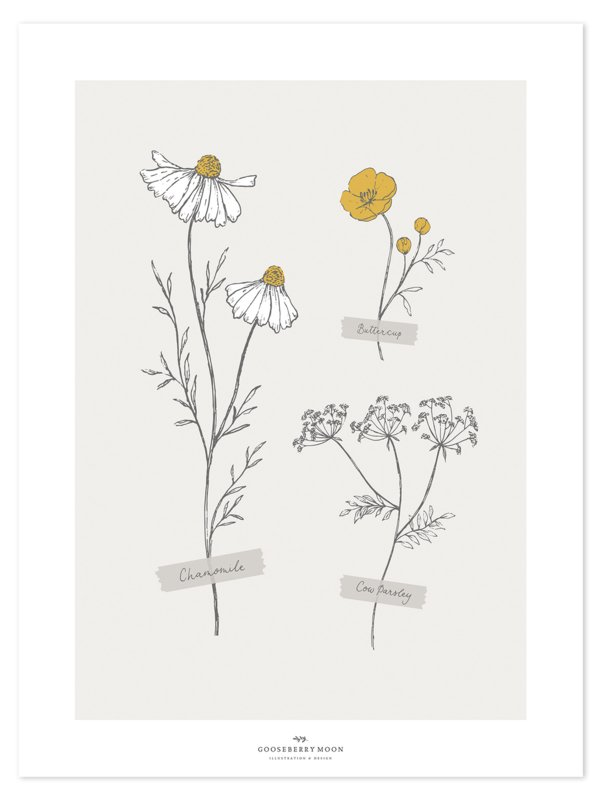 Lilipinso Chamomile Poster - Wild Flowers (30x40cm)