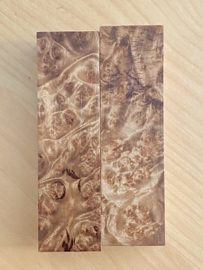 Myanmar warrelnoest kamferhout (Myanmar Camphor burl wood) - wild-