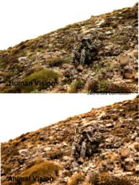DESOLVE® Camouflage (algemeen)